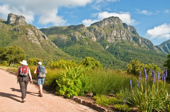 Hiking in Cape Town's Kirstenbosch Gardens South Africa