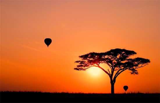 Montgolfière au dessus du Serengeti en Tanzanie