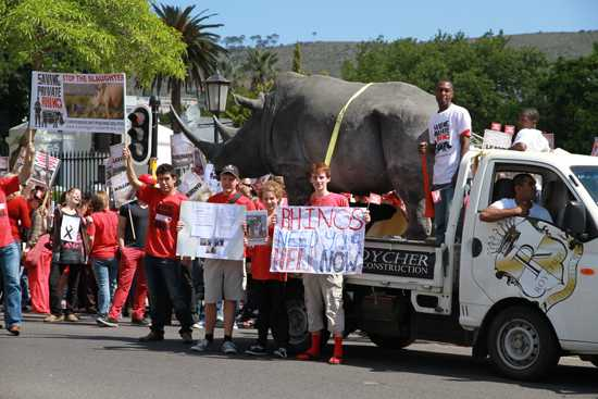 World Rhino Day in red