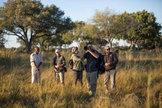 ¿Listo para tu próximo safari fotográfico?