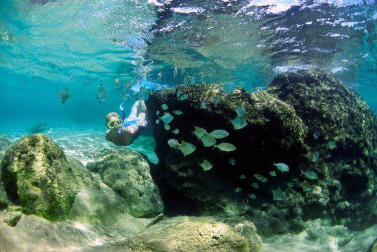Snorkeling at Mabibi, South Africa