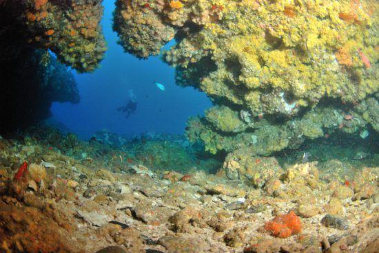The reefs at Protea Banks, KwaZulu-Natal
