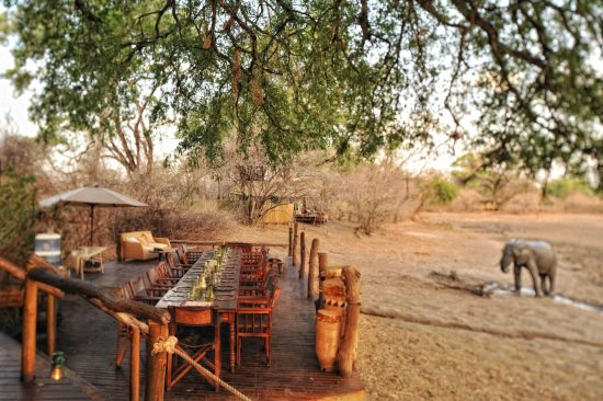 Mana Pools National Park's outdoor deck