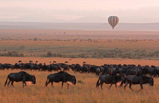 Unvergessliche Reisen in Afrika.