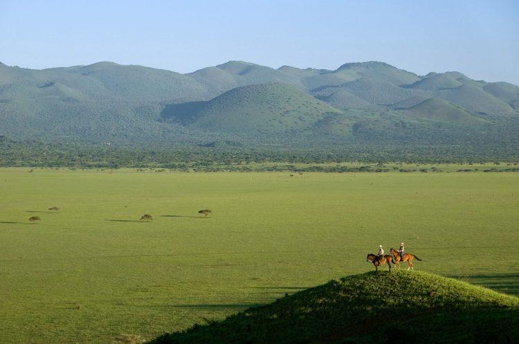 """Die """"Große Migration"""" in Kenia vom Pferderücken aus beobachten - 36 Gründe, warum Sie niemals nach Afrika reisen sollten"""