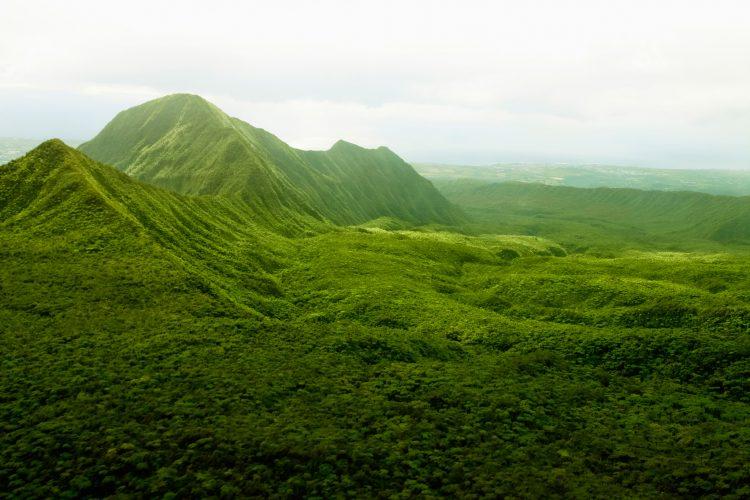 Die grüne Landschaft von La Réunion aus der Vogelperspektive