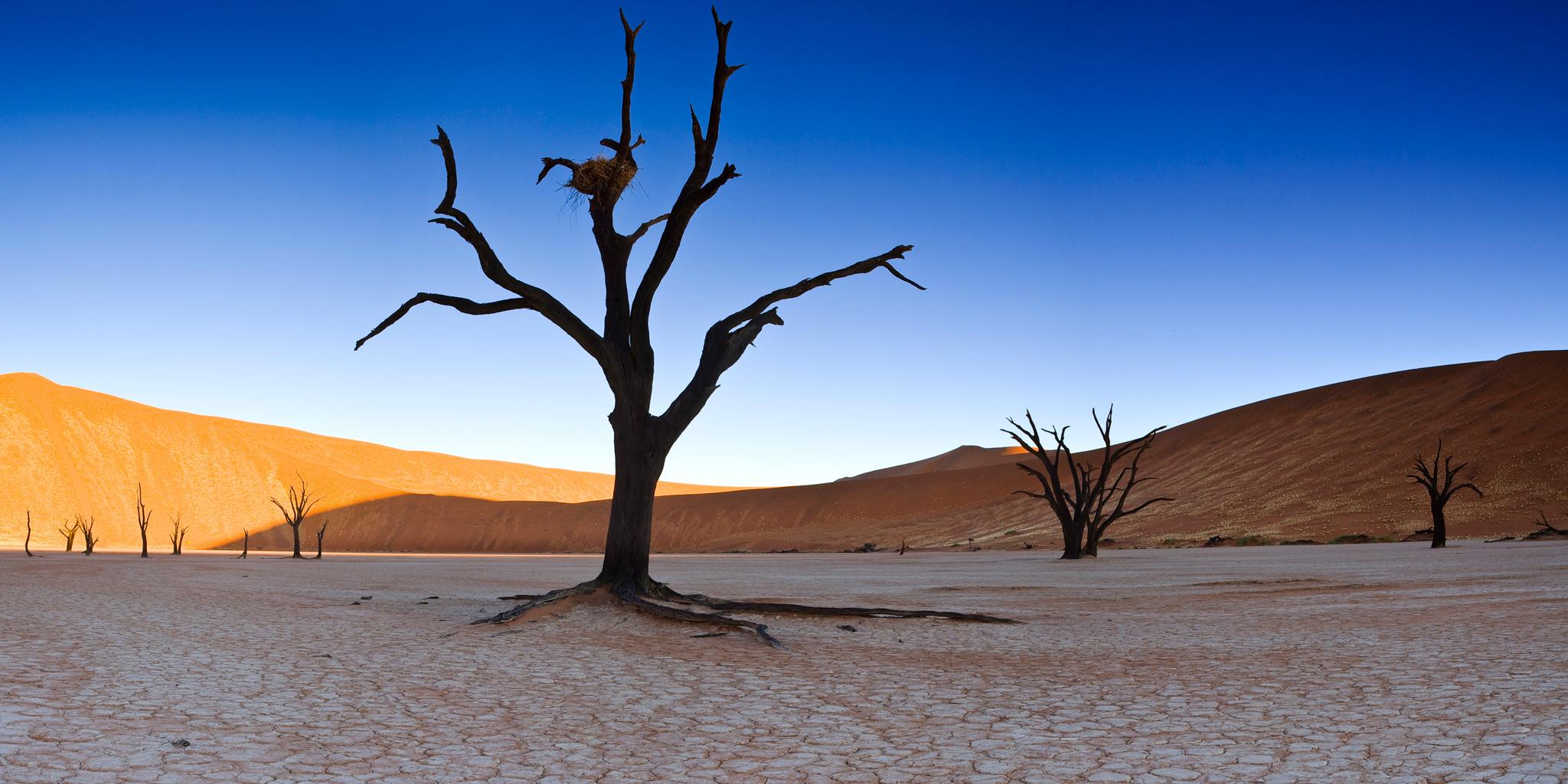 Sossusvlei Nationalpark in Namibia