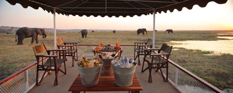 Sundowner neben Elefantenherde in Botswana