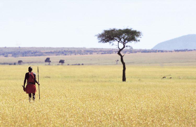 Massai in traditioneller Kleidung in der Savanne