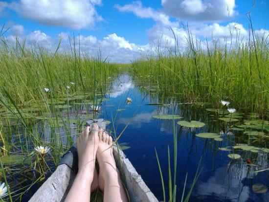 Mokoro-Ausflug durch die grüne Graslandschaft in Botswana