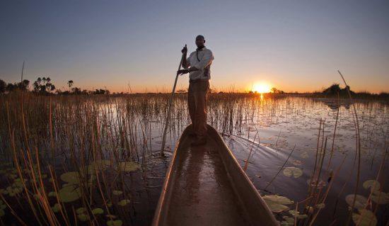 Um passeio de mokoro pelo Delta do Okavango é uma experiência inesquecível