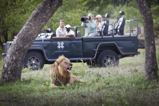 Capture members of the Big 5 on Photographic Safaris