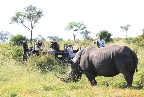 Londolozi offers memorable Photographic Safaris