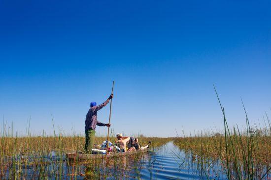 Mokoro trip experiences through reeds in the Okavango Delta