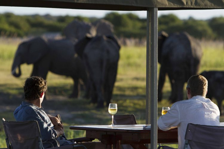 Drinks as you look at elephants at the Chobe Game Lodge in Botswana
