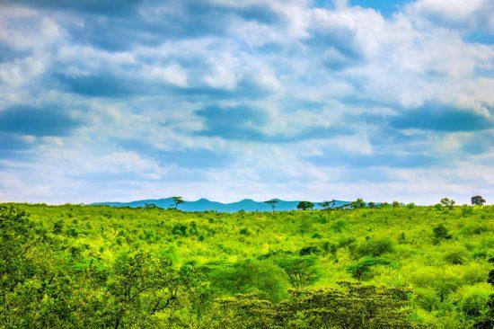 Ngong Hills, no Quênia