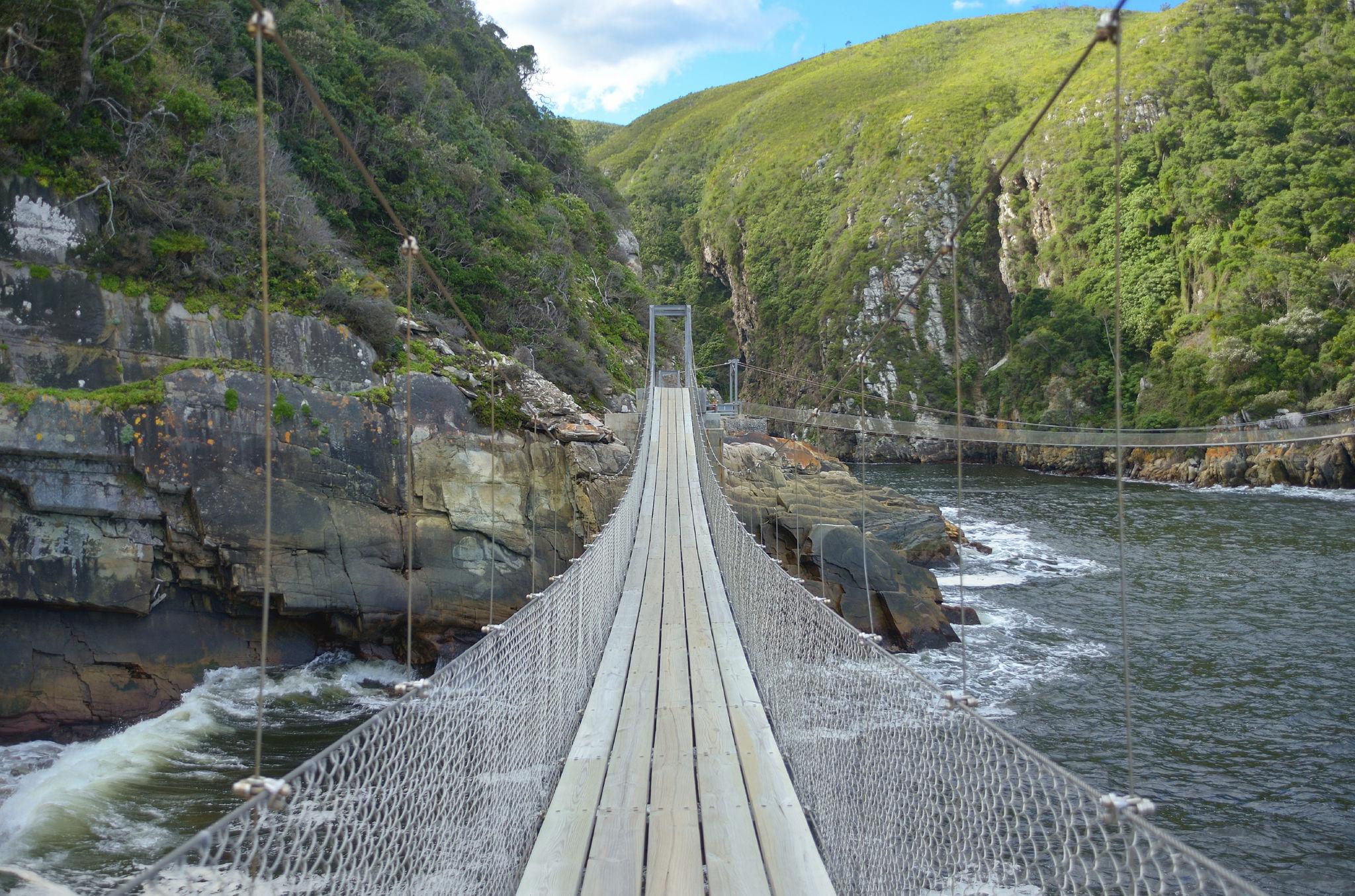 Hängebrücken über die tiefen Kluften des Tsitsikamma Forests