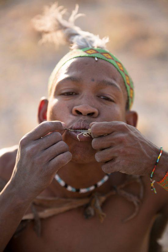 Bushmen can course nutrients from scorpions