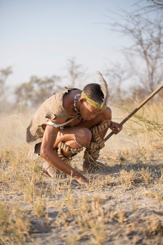 Bushmen are exceptionally skilled at tracking