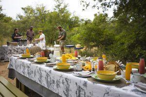 Petit déjeuner dans la brousse au Thornybush Game Lodge