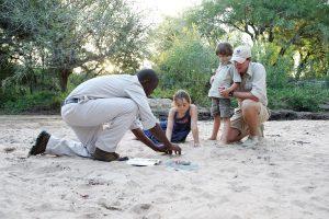 Famille avec guide dans la réserve de Londolozi