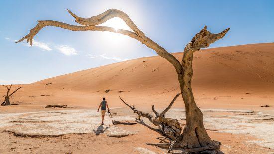 Le Deadvlei en Namibie