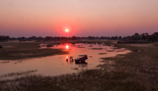 Safaris in Botswana are memorable