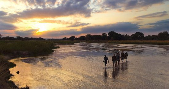 A walking safari in South Luangwa
