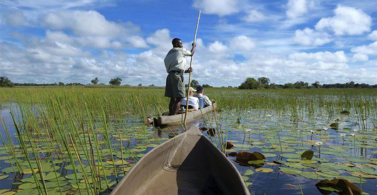 Mokoro safari in the Okavango Delta, Botswana