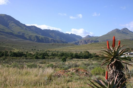 Visit South Africa's Route 62