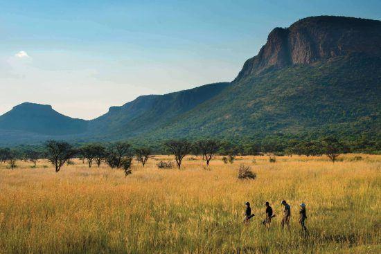 Marataba Trails Lodge oferece experiências únicas de safári a pé