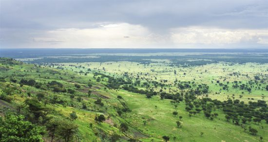 Panoramic view of Uganda's green hills