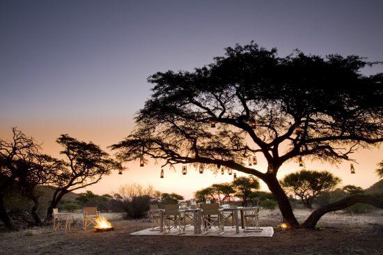 Dinner under a acacia tree