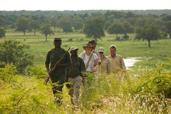 Ein Guide mit Gewehr führt eine Gruppe bei einer Buschwanderung durch eine grüne Graslandschaft