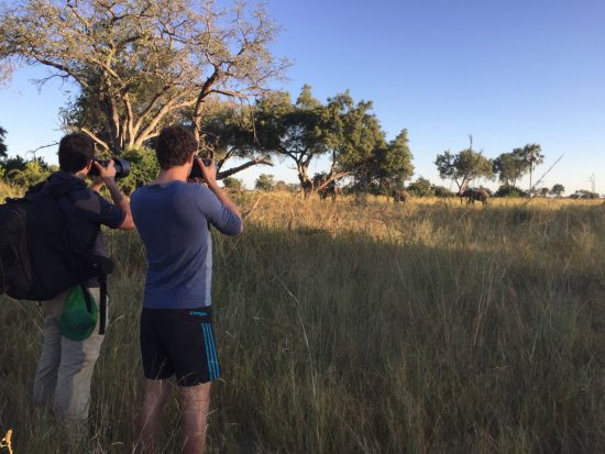 photographers on foot with african animals