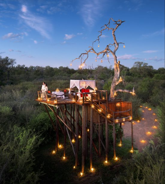 Treehouse night under the stars at Lion Sands