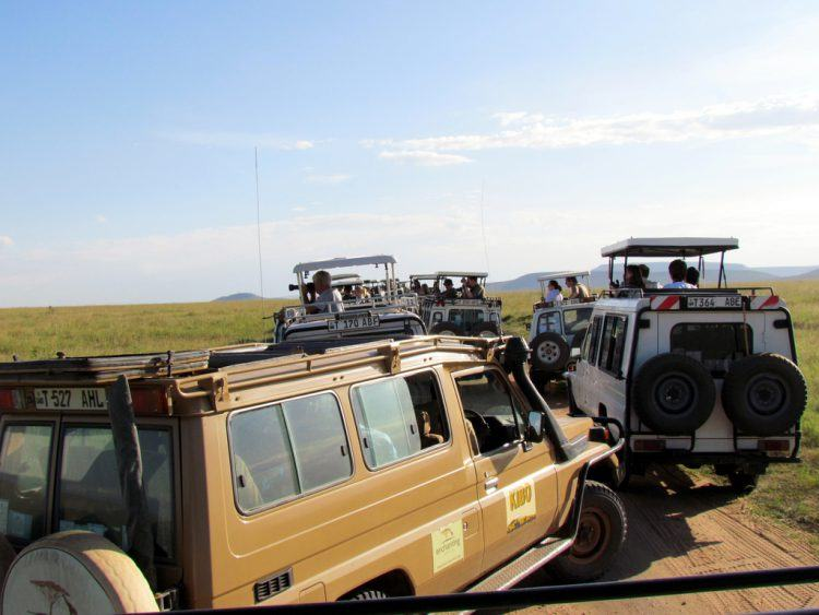 Vários veículos de safári se acumulam no Parque Nacional Serengueti