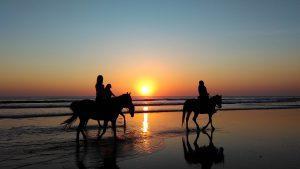 séjour romantique à l'île maurice : balade à cheval