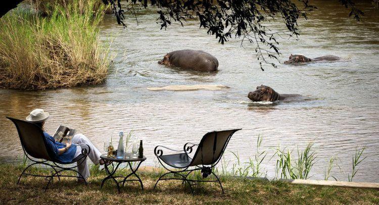 Eine Person liest vor einem Gewässer mit Flusspferden in einem Magazin