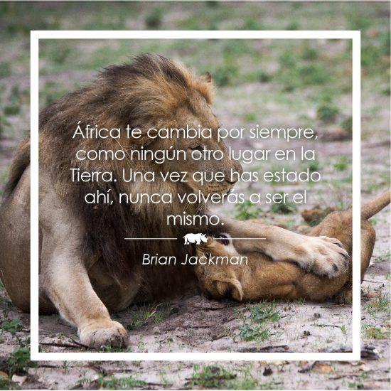 Frase sobre África de Brian Jackman