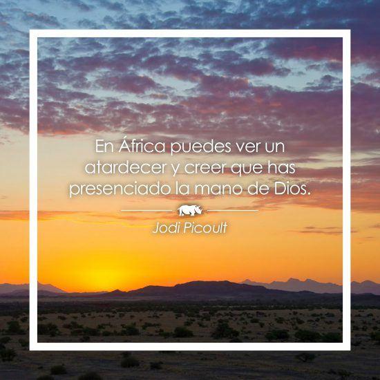 Frase sobre África de Jodi Picoult