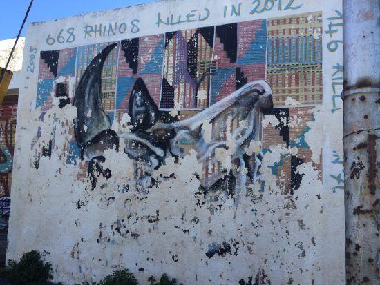 Schützt die Nashörner: Straßenkunst in Kapstadt macht auf Wilderei-Problem aufmerksam