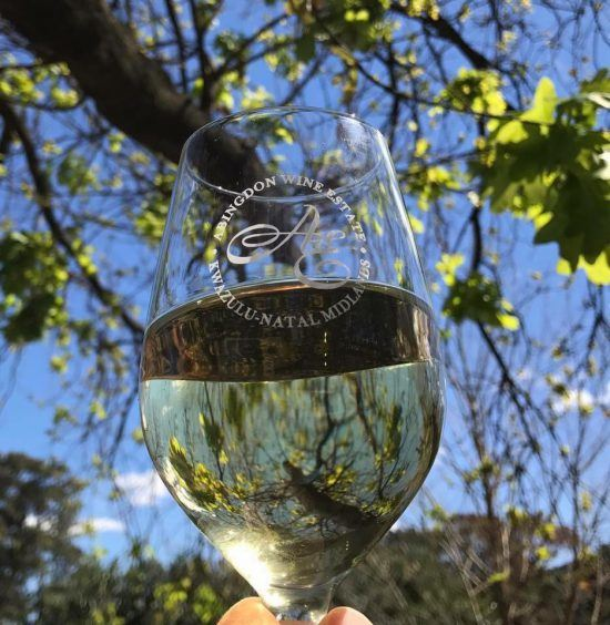 Abingdon Wine Estate in the Midlands South Africa