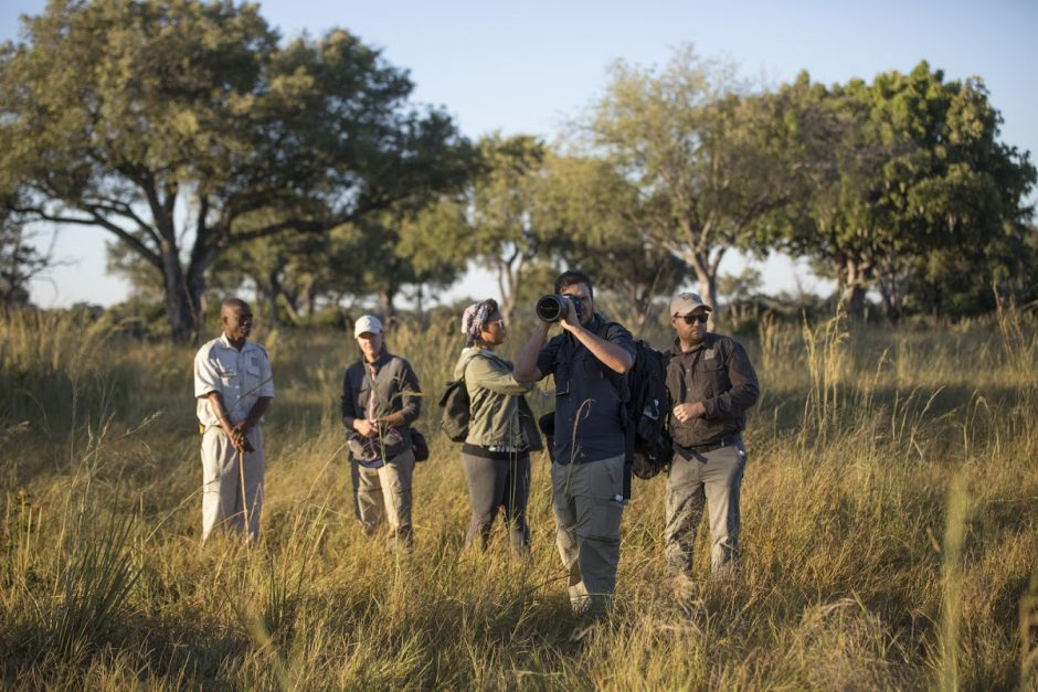 The impact of Covid-19 on wildlife in Africa: Wildlife ACT hopes for travel to come back soon