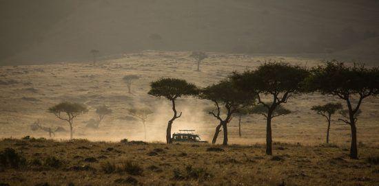 Um veículo de safári se aproxima no horizonte na Reserva Nacional Masai Mara