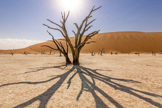 Grandes llanuras desérticas al calor del sol