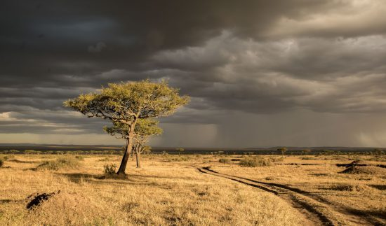 Sunset and late afternoon rain shower in the Mara Triangle in Kenya