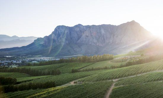 Visit South Africa Cape Winelands