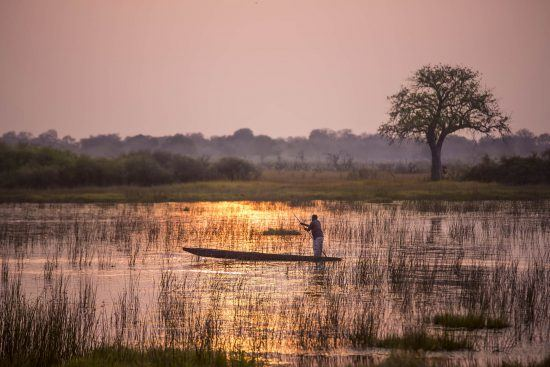 Wasserstand im Okavango Delta - Mann in einem Mokoro