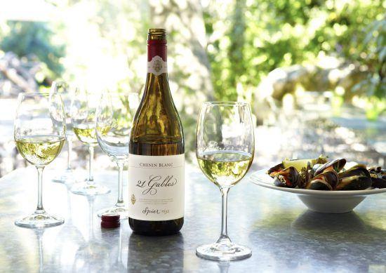 Wine Tasting bei Spier in Stellenbosch - Weinfarmen bei Kapstadt